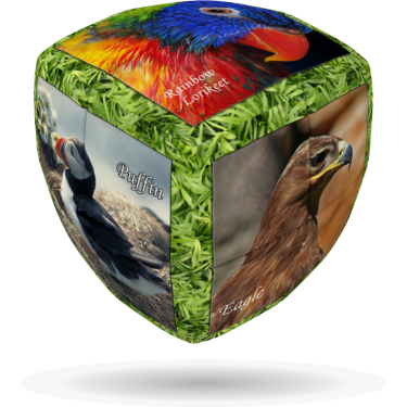 Unique Birds - V-CUBE 2 Pillow