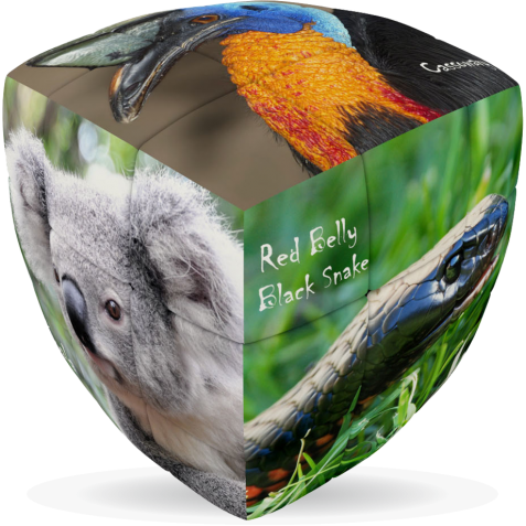 Australian Animals - V-CUBE 3 Pillow
