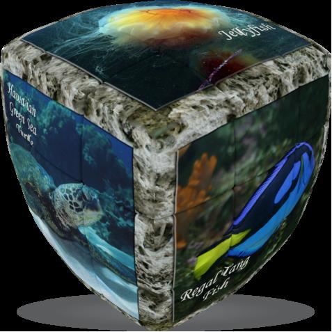 Sea World - V-CUBE 3 Pillow