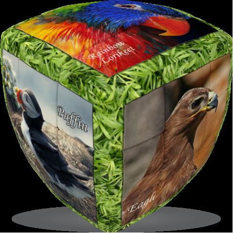 Unique Birds - V-CUBE 3 Pillow